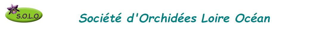 Société d'Orchidées Loire Océan